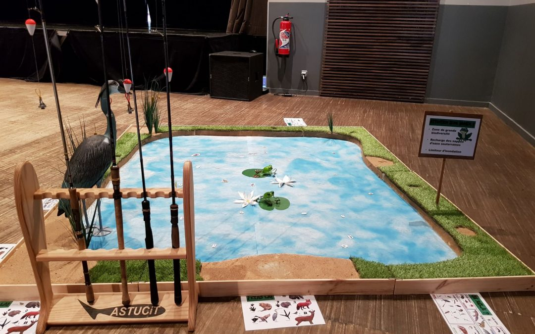 Animation autour de l'eau